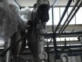 Употребявана вертикална пакетираща машина Hassia-India с дозатор